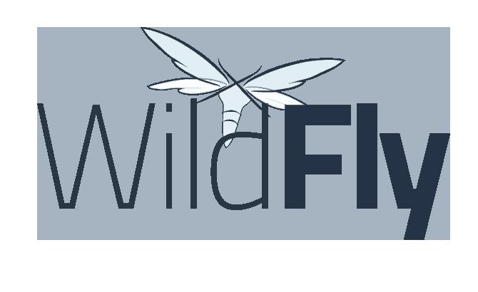 logo wildfly